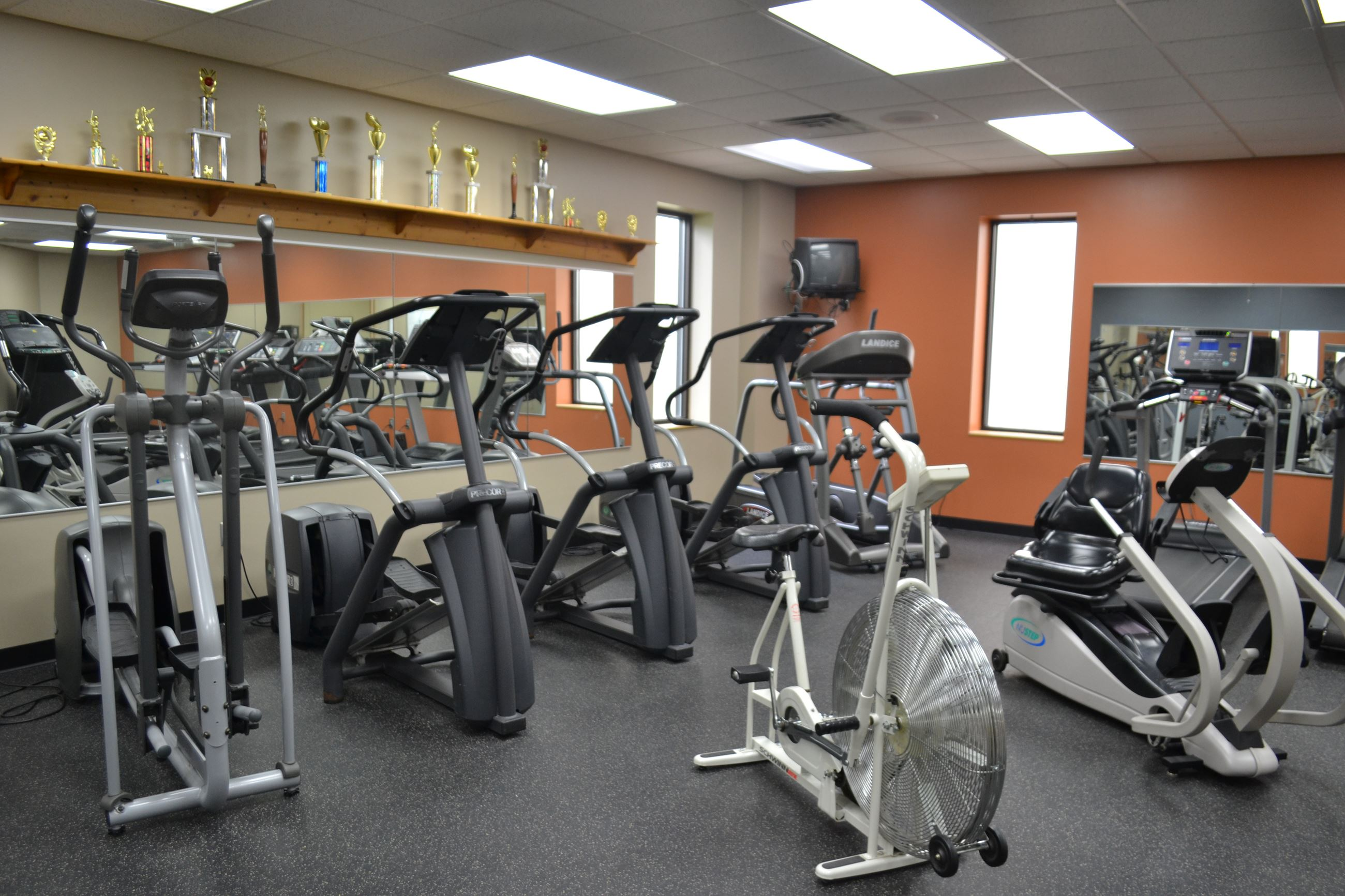 Cardio Room Bikes and Elipticals